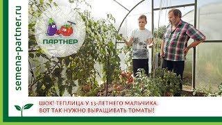 ШОК! Теплица у 13-летнего мальчика. Вот так нужно выращивать томаты!