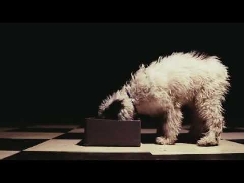 DJ Tuniziano & JWP/BC feat. Warszafski Deszcz - Dawaj Milion (prod. Sir Michu)