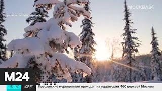 Сегодня празднуется Всемирный день зимних видов спорта - Москва 24