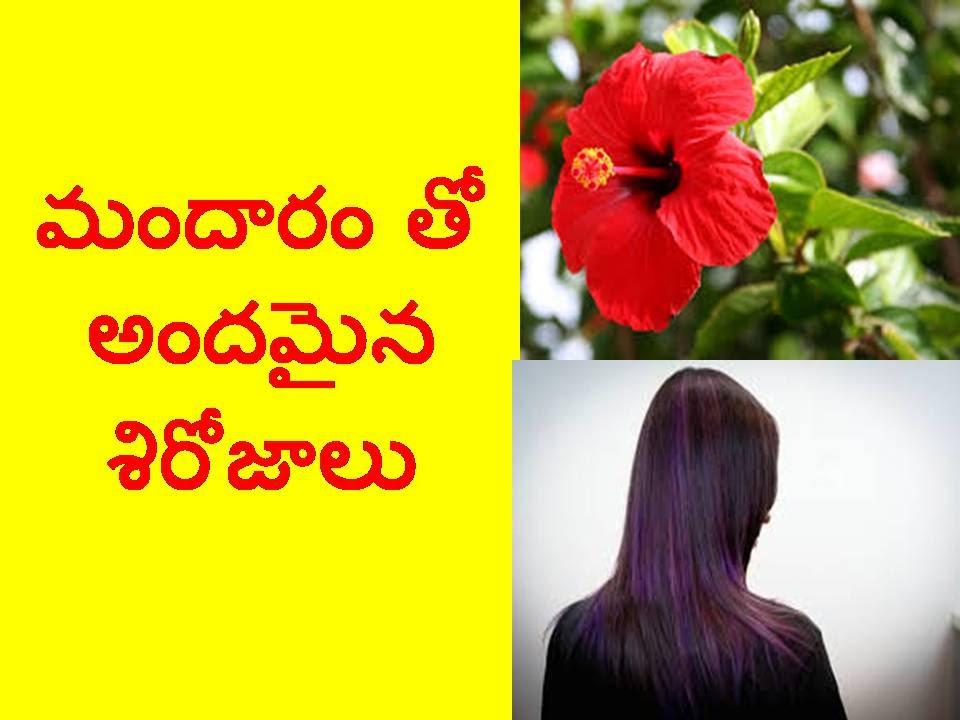 Benefits Of Hibiscus For Beauty Hair I Telugu Bharathi I
