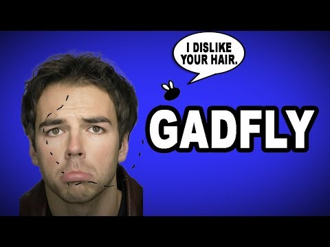 😒👈 Learn English Words: GADFLY - Meaning, Vocabulary with Pictures and Examples