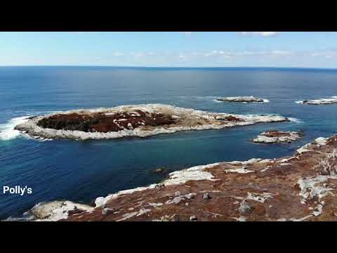 Seascapes, Canada's Ocean playground