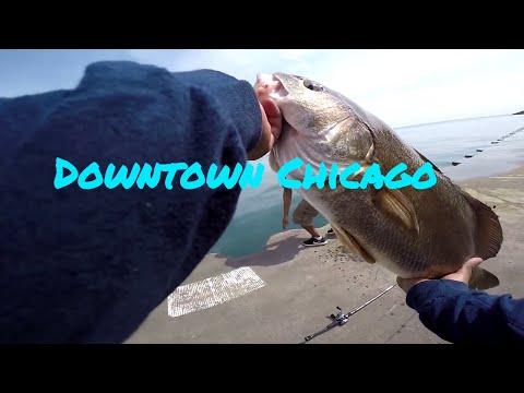 Fishing Downtown Chicago Lake Michigan
