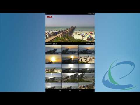 Webcams 1