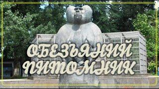 Абхазия 2020.  Сухумский обезьяний питомник. Ботанический сад. Sukhumi Monkey Nursery.