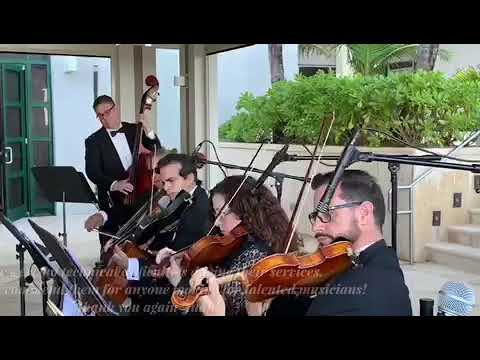Classy Strings Ensemble | Allied Music Solutions