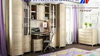 Модульная мебель фабрики Лером.(, 2014-05-28T08:06:59.000Z)