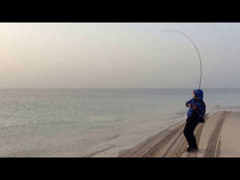21-Dec-2016 Inland Sea Shore Jigging Kingmac