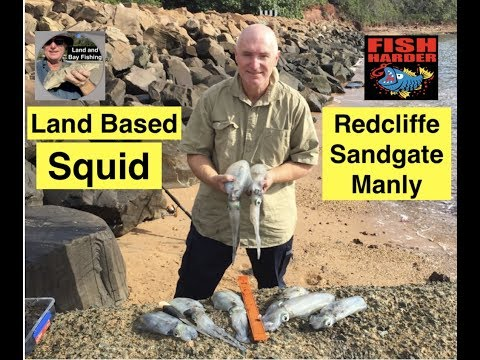 Squid Fishing, Land Based Brisbane, MAPS, SPOTS And JIGS 2018.