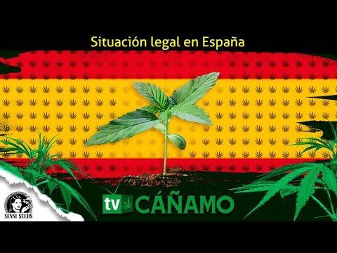 Situación legal del cannabis en España, Cáñamo tv