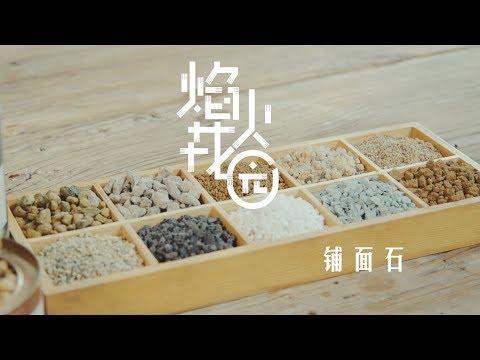 《焰火花园》97 十种常见的多肉铺面石,教你种出更精致美观的多肉盆栽