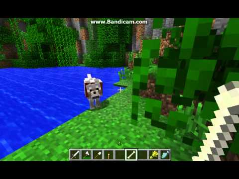 how to give a dog a bone in minecraft