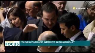 Дүйнөлүк көргөзмөдө Казакстандын балы чет элдиктердин кызыгуусун жаратты