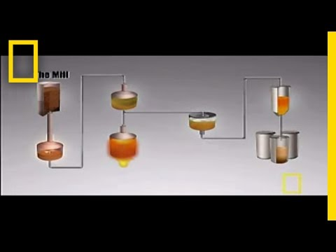 The Perfect Beer | National Geographic
