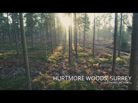 Afternoon flight at the Hurtwood Forest - DJI Phantom 2, GoPro Hero 4 in 4k resolution