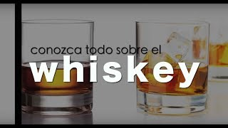 Whisky - cómo tomar, tipos de whiskys, y demás datos