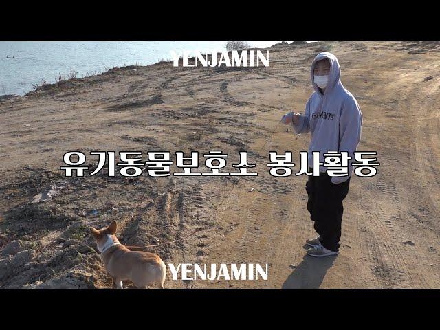 옌자민, 치타 누나와 유기동물보호소에서 봉사하다!