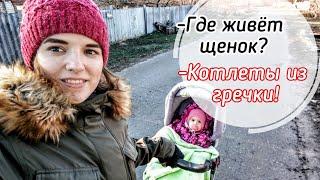Гречневые котлеты Гуляем с щенком Жизнь молодой мамы