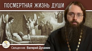 ПОСМЕРТНАЯ ЖИЗНЬ ДУШИ. 3-й 9-й 40-й день. Священник Валерий Духанин