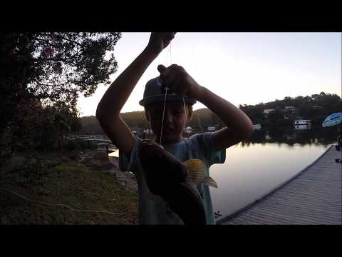 Fishing Crabbing Cooking Eating Picking BlueBerries On The South Coast Australia