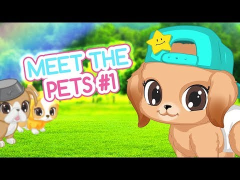 Baby Secrets - Meet the Pets #1 | Videos for Kids