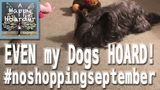 A Happy Hoarder: EVEN MY DOGS HOARD! Cessie and Dash and their Toys! #noshoppingseptember Day 12