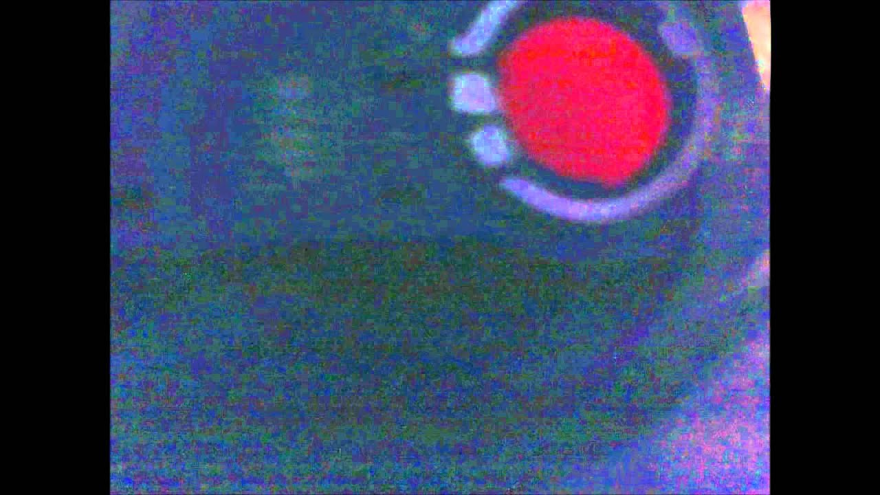 2001 Dodge Durango Break Light Not Working Youtube 2002 Tail Wiring Diagram