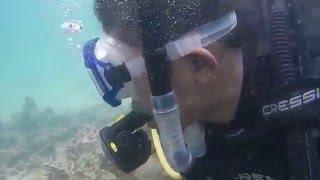 UnderWater Pulau Dua Bakongan