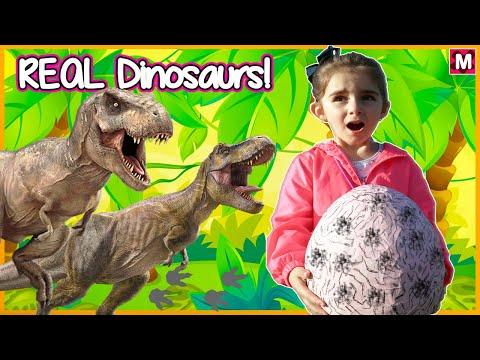 Dinosaur Escape Showdown. Dinosaurs For Kids Video - Giant T-Rex Dinosaur Adventure in the Park