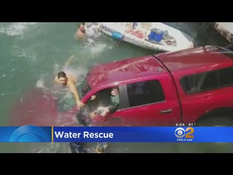 Good Samaritans Save Mother, Son And Dog After Car Plunges Off Marina