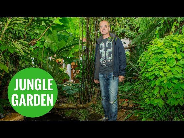 Grandfather transforms back garden into rain forest