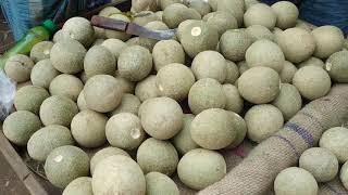 Indian Street Food Kolkata | WOOD APPLE Cutting And Eating In My City@ Rs 30 | Kodbel Vortha