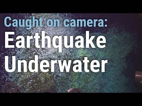 ROV Jason captures underwater video during earthquake