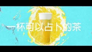答案茶Answer Tea - 形象影片|全虹製片