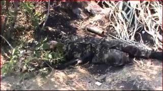 правда о войне  Украина 2014 vvv67vvv