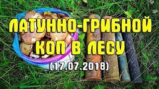 Латунно - грибной коп в лесу (17.07.2018)