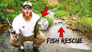 Fishing for DYING Bass in Dried Up Pond (Fish Rescue!!)