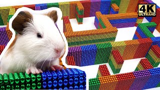 DIY - How To Build Amazing Maze Labyrinth For Pet Hamster from Magnetic Balls | Magnet World 4K