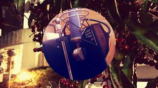 写真:京都 御蔭通沿いのマンリョウ? ------------------------ ご覧い...