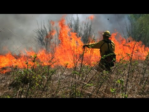 Fire Chiefs on the Impacts of Climate Change on Wildfires