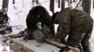 BEAER HUNTING! Охота на медведя берлога УДАЧА!!!