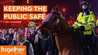Police Horses Help Make the Public Feel Safe | Mounted Branch