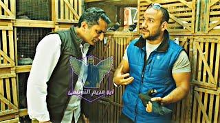 شوف غية حمام احمد مكي واحلى كلام عن الحمام Ahmed Mekky