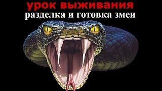 🐍Разделка и Приготовление Змеи