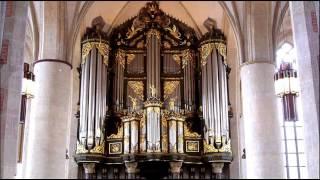 Bach - Organ Concerto BWV 594 - Ton Koopman