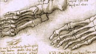 2/2 The Culture Show at Edinburgh: Leonardo da Vinci - The Anatomist