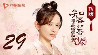 知否知否应是绿肥红瘦【TV版】29(赵丽颖、冯绍峰、朱一龙 领衔主演)