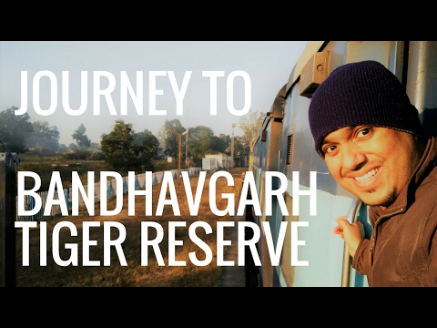 Journey to Bengal Tiger Country | Bandhavgarh National Park | Madhya Pradesh | India | Part 1/3