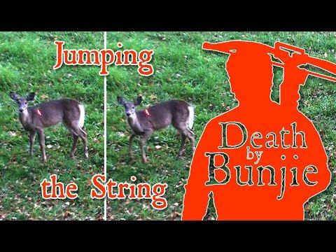 Crossbow Hunt, Deer Jumps The String!