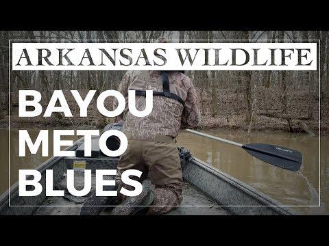 Bayou Meto Blues